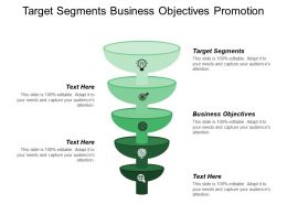 Target Segments Business Objectives Promotion Strategy Distribution Plan