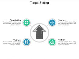 Target Setting Ppt Powerpoint Presentation Icon Pictures Cpb