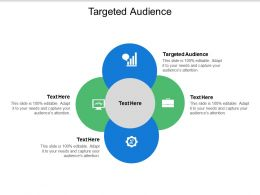 Targeted Audience Ppt Powerpoint Presentation Diagram Ppt Cpb