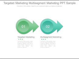 Targeted Marketing Multisegment Marketing Ppt Sample