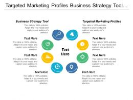 Targeted Marketing Profiles Business Strategy Tool Customer Segmentation Cpb