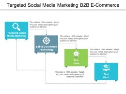 Targeted Social Media Marketing B2b E Commerce Technology Crisis Management Cpb