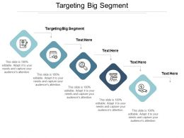 Targeting Big Segment Ppt Powerpoint Presentation Ideas Format Cpb