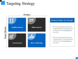 Targeting Strategy Ppt Sample File