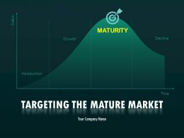 Targeting The Mature Market PowerPoint Presentation Slides