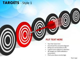 Targets Style 1 PPT 13