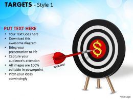 Targets Style 1 PPT 15