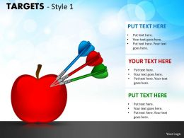Targets Style 1 PPT 17