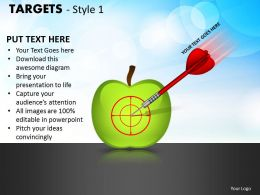 Targets Style 1 PPT 18
