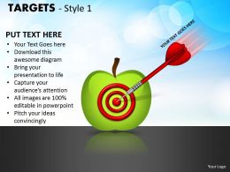 Targets Style 1 PPT 19