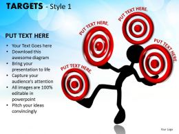 Targets Style 1 PPT 20