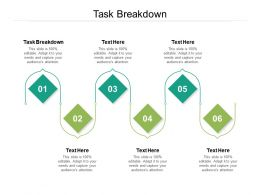 Task Breakdown Ppt Powerpoint Presentation Gallery Portfolio Cpb
