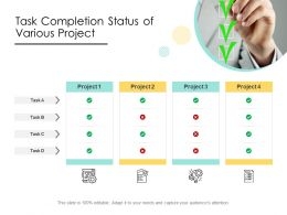 Task Completion Status Of Various Project