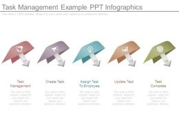 Task Management Example Ppt Infographics