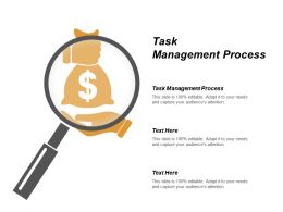 Task Management Process Ppt Powerpoint Presentation Gallery Introduction Cpb