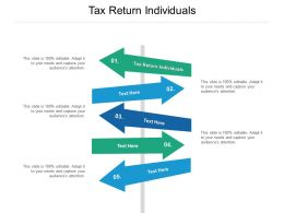 Tax Return Individuals Ppt Powerpoint Presentation Infographic Template Cpb