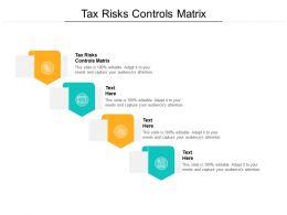 Tax Risks Controls Matrix Ppt Powerpoint Presentation Model Visual Aids Cpb