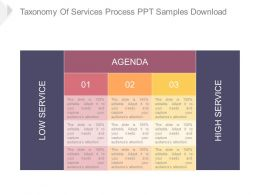 Taxonomy Of Services Process Ppt Samples Download
