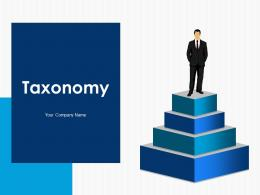 Taxonomy Support And Operation Marketing Development Finance Analysing Evaluating