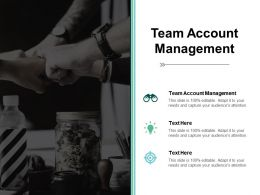 Team Account Management Ppt Powerpoint Presentation Show Icons Cpb
