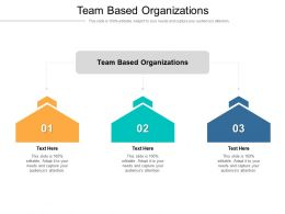 Team Based Organizations Ppt Powerpoint Presentation Infographic Template Designs Cpb