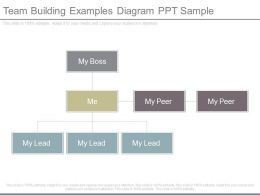 Team Building Examples Diagram Ppt Sample