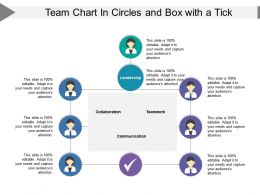 Team Chart In Circles And Box With A Tick