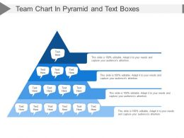 Team Chart In Pyramid And Text Boxes