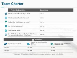 Team Charter Ppt Professional Infographic Template