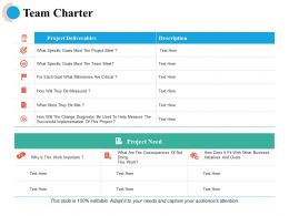 Team Charter Project Need Ppt Powerpoint Presentation File Icon
