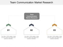 Team Communication Market Research Ppt Powerpoint Presentation Professional Microsoft Cpb