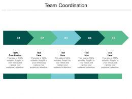 Team Coordination Ppt Powerpoint Presentation Icon Mockup Cpb