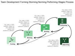 Team Development Forming Storming Norming Performing Stages Process