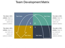 Team Development Matrix