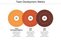 Team Development Metrics Ppt Powerpoint Presentation Summary Templates Cpb