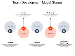 Team Development Model Stages