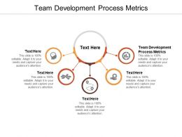 Team Development Process Metrics Ppt Powerpoint Presentation Portfolio Images Cpb