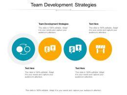 Team Development Strategies Ppt Powerpoint Presentation Icon Introduction Cpb
