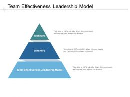 Team Effectiveness Leadership Model Ppt Powerpoint Presentation Inspiration Rules Cpb