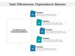 Team Effectiveness Organizational Behavior Ppt Powerpoint Presentation Introduction Cpb