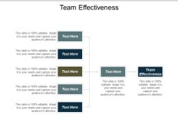 Team Effectiveness Ppt Powerpoint Presentation Show Sample Cpb