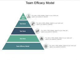 Team Efficacy Model Ppt Powerpoint Presentation Pictures Layouts Cpb