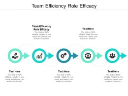 Team Efficiency Role Efficacy Ppt Powerpoint Presentation Styles Visuals Cpb