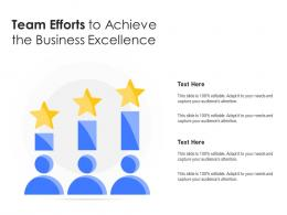 Team Efforts To Achieve The Business Excellence