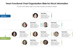 Team Functional Chart Organization Slide For Stock Information Infographic Template