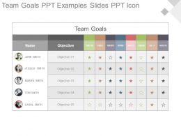Team Goals Ppt Examples Slides Ppt Icon