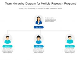 Team Hierarchy Diagram For Multiple Research Programs Infographic Template