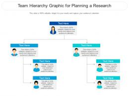 Team Hierarchy Graphic For Planning A Research Infographic Template