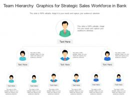 Team Hierarchy Graphics For Strategic Sales Workforce In Bank Infographic Template