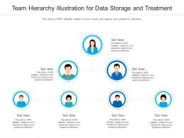 Team Hierarchy Illustration For Data Storage And Treatment Infographic Template